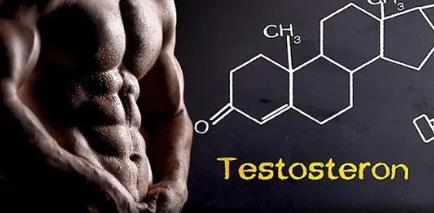 ¿Cómo se puede aumentar la testosterona? Efecto de la testosterona sobre la potencia 2019